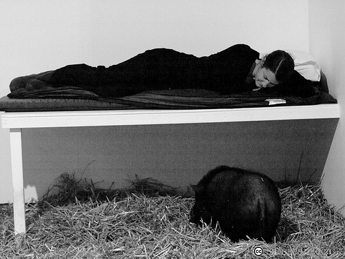 Kira O'Reilly - Going to Sleep with a Pig. Photo: Samscam