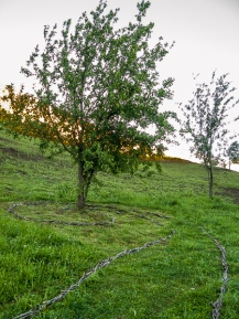 phoniesbergeres-140522-031_LR_WP