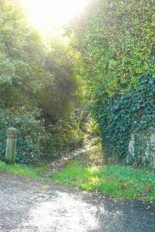 Northam-track-010-r72