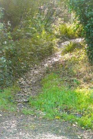 Northam-track-011-r72-2