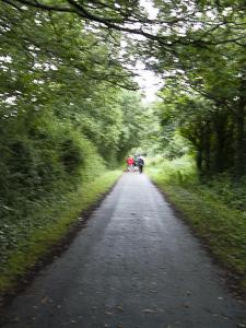 Tarka Trail at Fremington