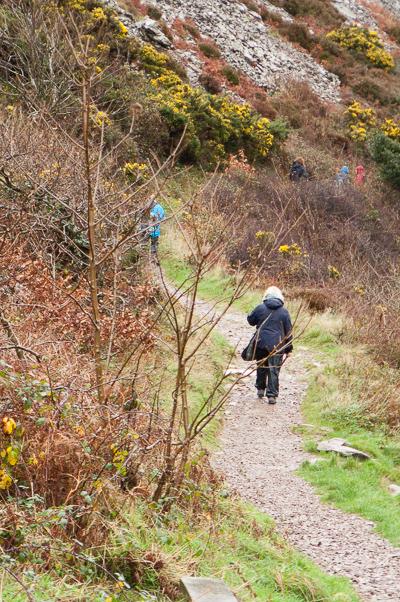 Heddon Valley, North Devon