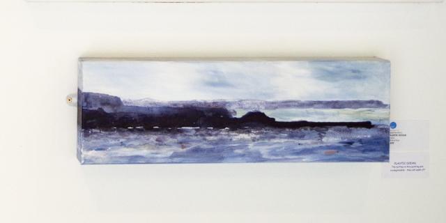 A Plastic Ocean - Paula Newbery